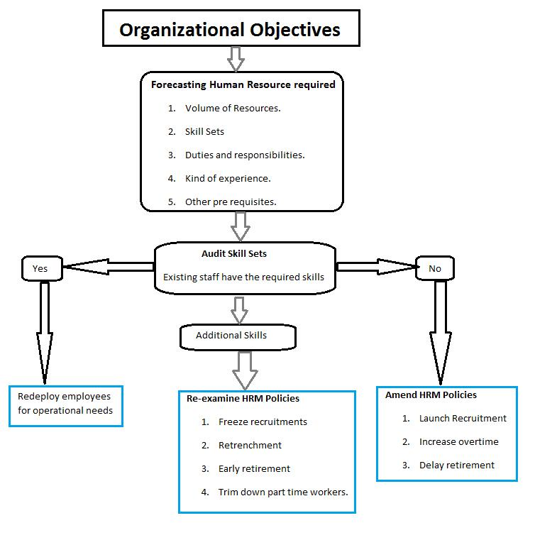 Human Resource Planning Hrp Definition Importance  Process