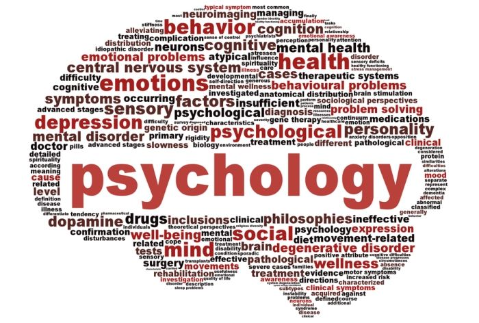 Psychology: Definition, Types, Perspectives – StudiousGuy