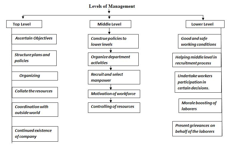 Three Levels of Management: Top, Middle & Lower – StudiousGuy