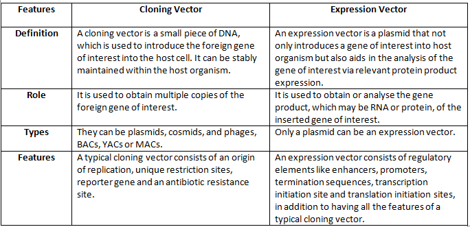 Difference Between a Cloning Vector and an Expression Vector