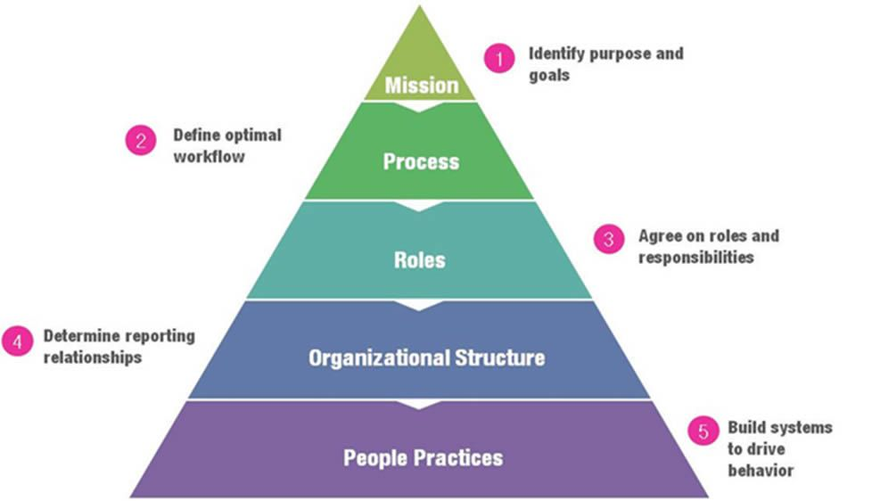 Organizational Design And Structure Definition Elements Types Pros Cons Studiousguy